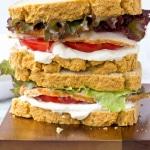 Grain Free Sandwich Bread (Yeast Free)