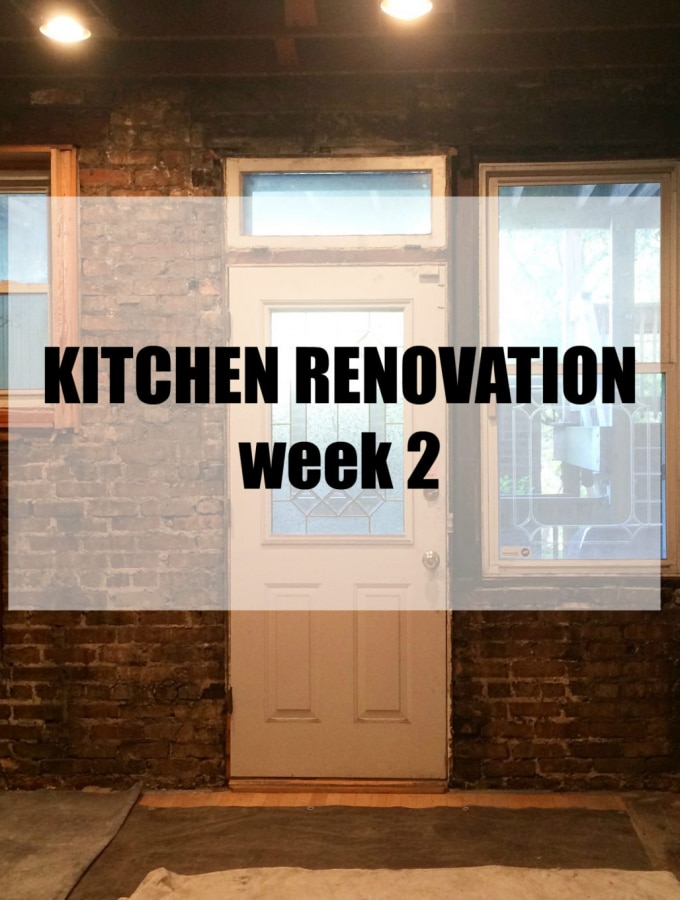 Kitchen Renovation: Week 2