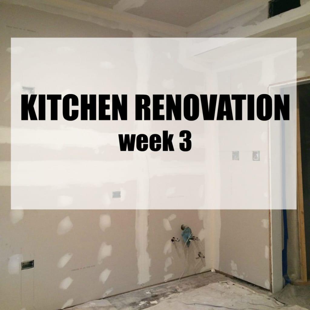 Kitchen Renovation: Week 3