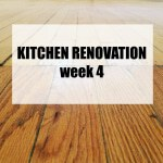 Kitchen Renovation: Week 4