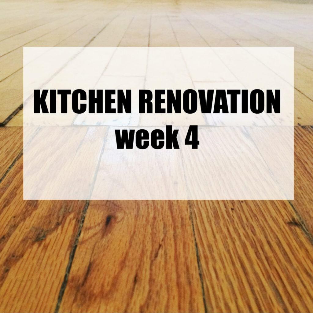 Kitchen Renovation: Week 4