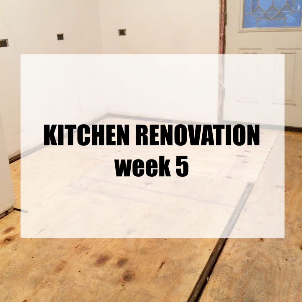A Clean Bake Kitchen Renovation Week 5