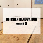 Kitchen Renovation: Week 5