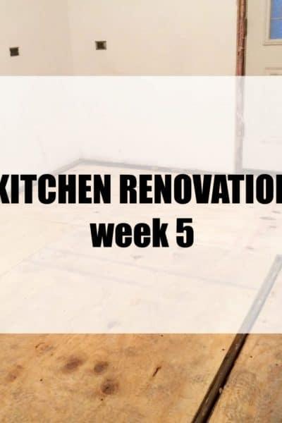 Kitchen Renovation: Week 5