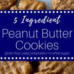 Flourless Peanut Butter Cookies #glutenfree #glutenfreecookies #cookierecipes #naturallysweetened #glutenfreecookies #paleocookies #paleocookierecipes #healthycookies #healthycookierecipes #easycookies