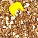 Tropical Hempseed Granola (Grain Free, Gluten Free, Lower Carb)