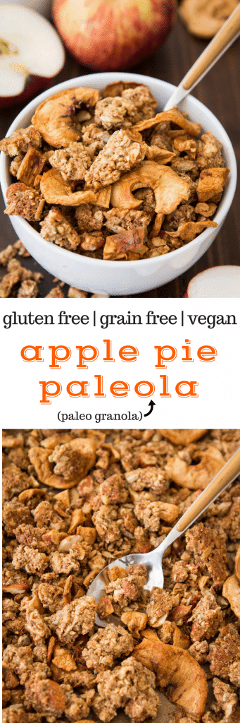 Apple Pie Paleola (Apple Grain Free Granola) #glutenfree #vegan #paleo #grainfree #breakfast #recipe