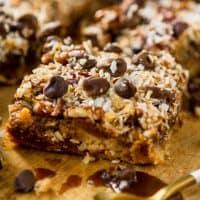 Gluten Free & Paleo Magic Cookie Bars